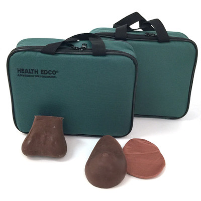 Teen Breast Self-Examination and Testicular Self-Examination models brown version, synthetic realistic feel tissue includes lumps, Health Edco, 26496