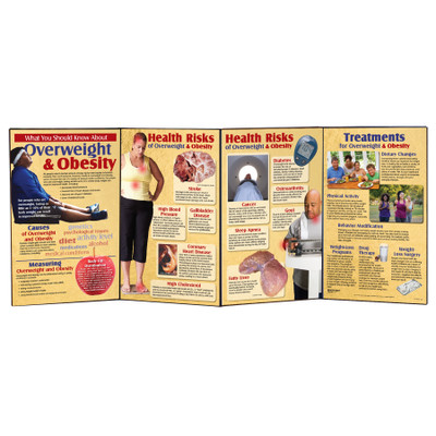 Overweight and Obesity Folding Display for health education by Health Edco information about obesity's health effects, 79319